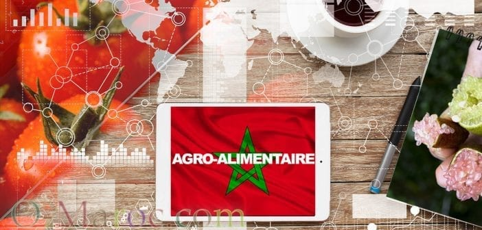 Agroalimentaire maroc