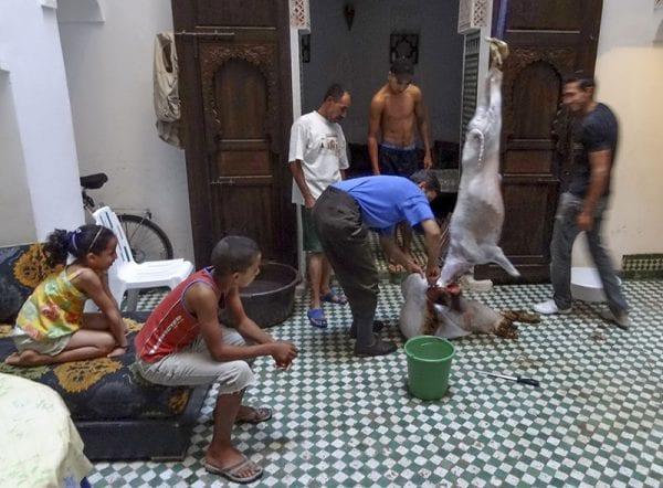 Dans un riad à Fès, le sacrifice de l'Aïd El Kébir