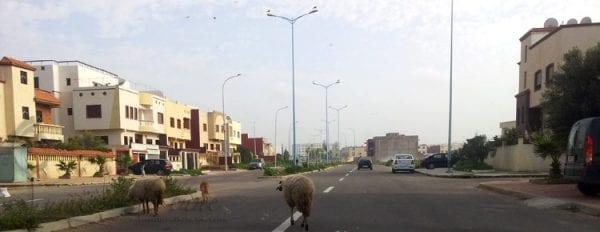 Les rues d'El Jadida