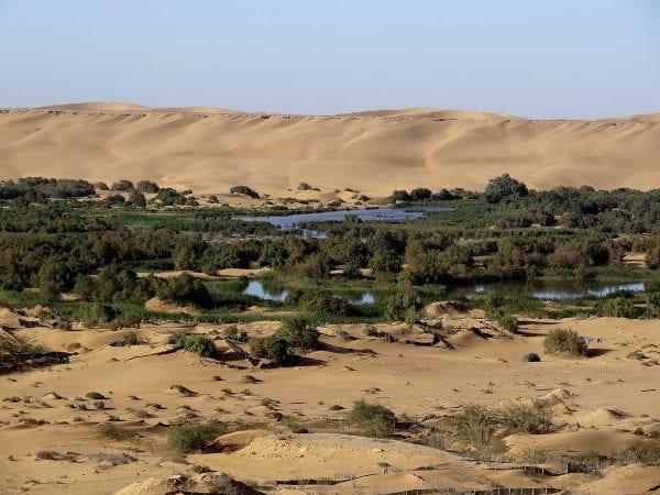 Photo des bords de la Segiua al Hamra dans le désert